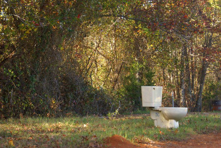 Toilet In A Field