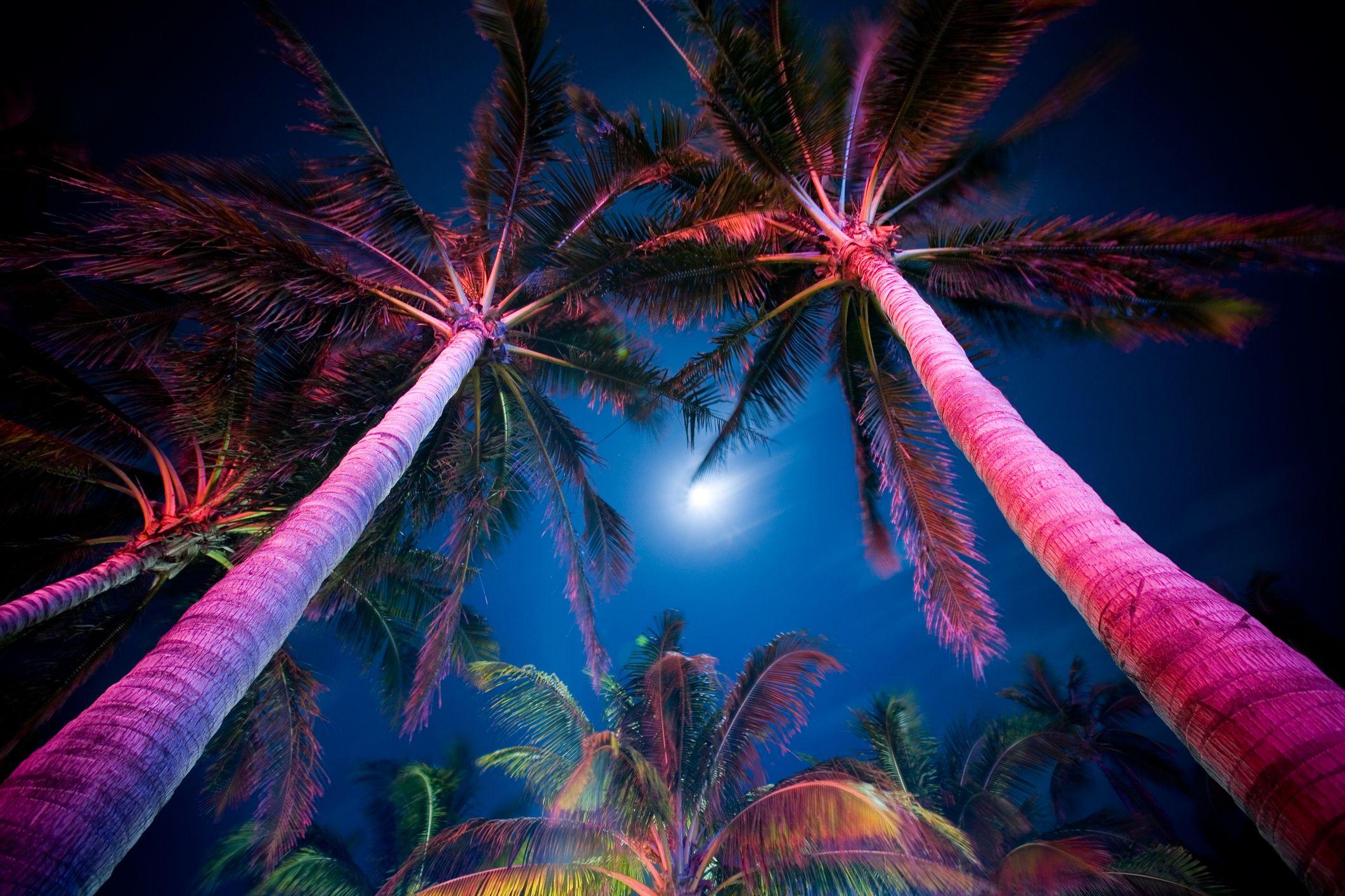 Romantic Florida Coast To Coast For Couples