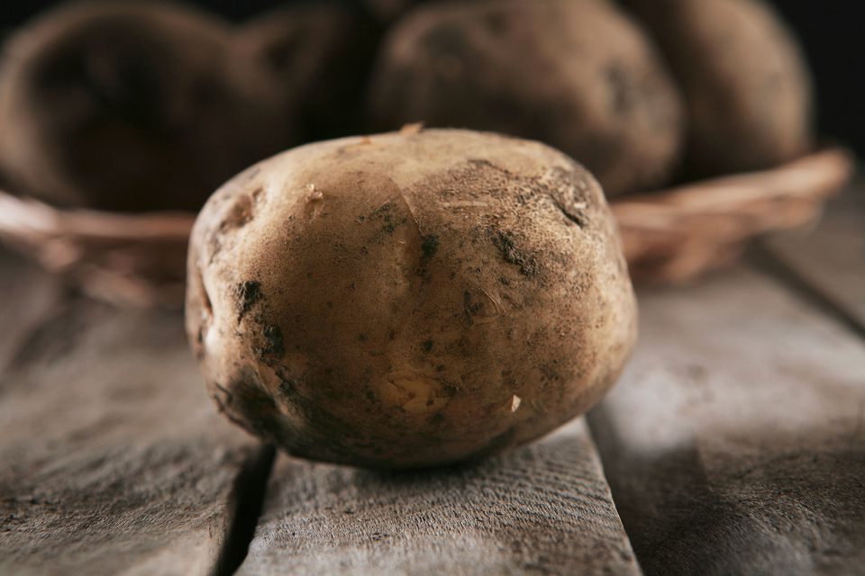 A russet potato from the great state of Idaho
