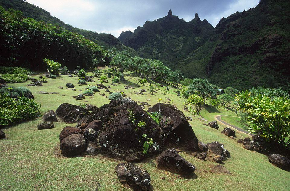Driving tour of kauais north shore usa hawaii kauai limahuli gardens solutioingenieria Image collections