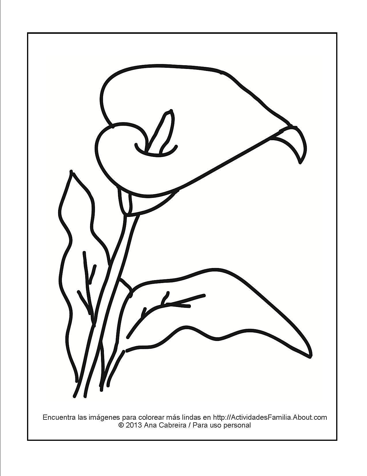 Famoso Desafiante Flor Para Colorear Imágenes - Dibujos Para ...