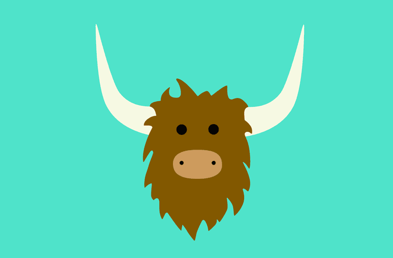What Is Yik Yak?