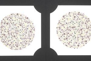 Color blindness test plates