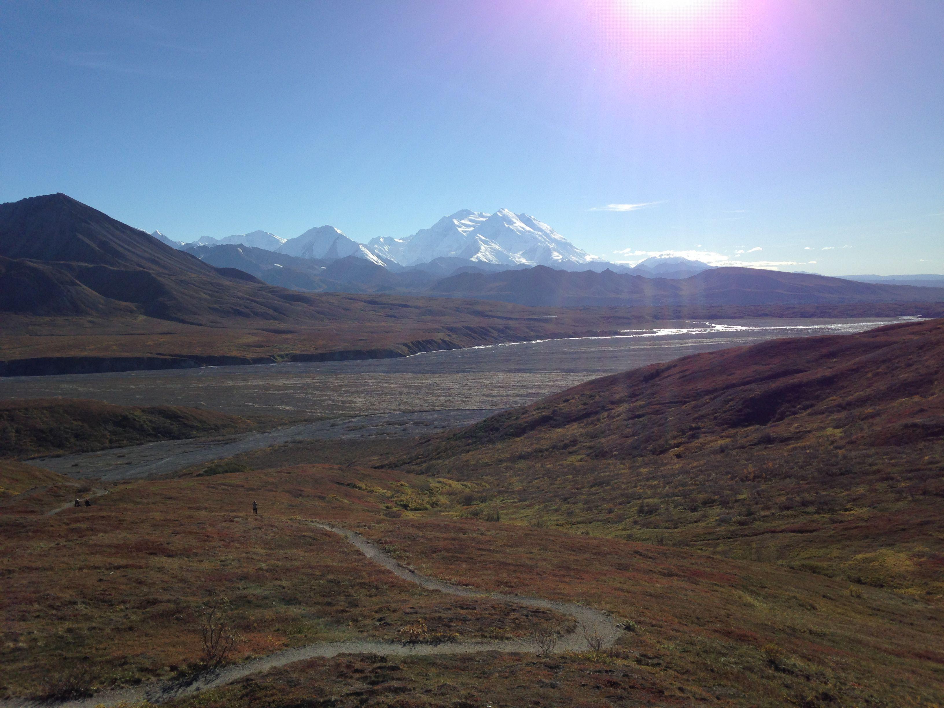 Denali National Park And Preserve Photo Tour