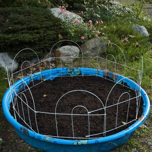 container gardening picture of kiddie pool container garden