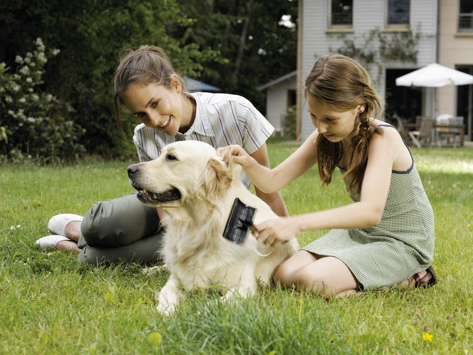 Mother and daughter (8-10) brushing dog in garden, smiling