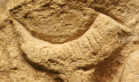 Detail of Horn of the Venus of Laussel