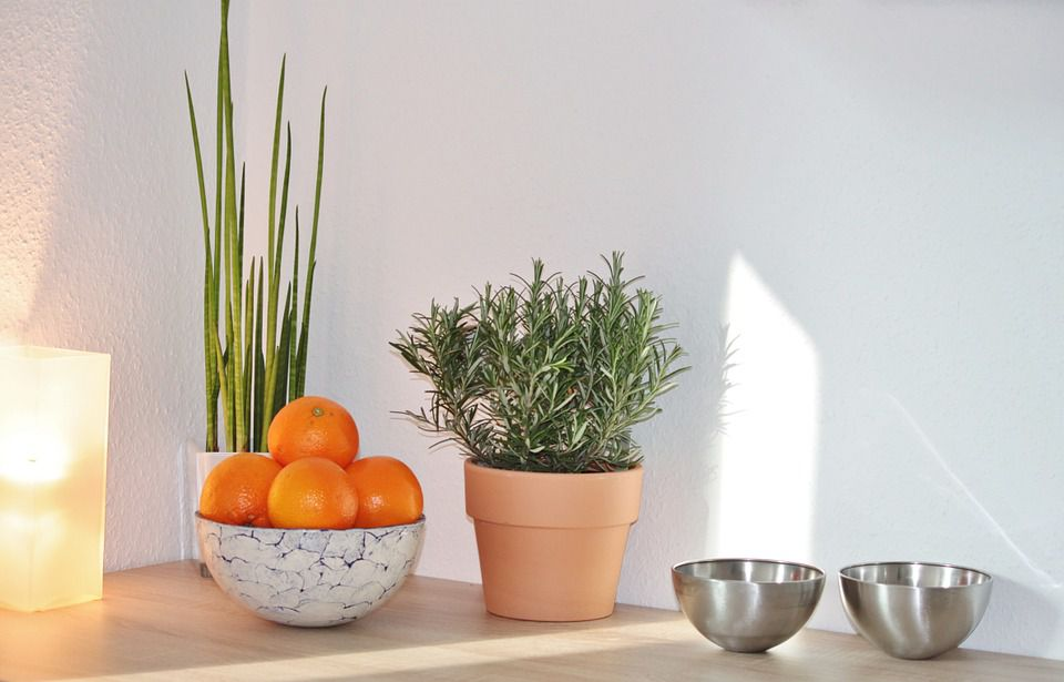 Feng Shui Shapes in Home Decor