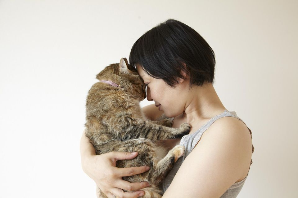 Woman soothing her cat