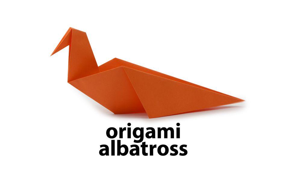 Origami Albatross Bird Instructions