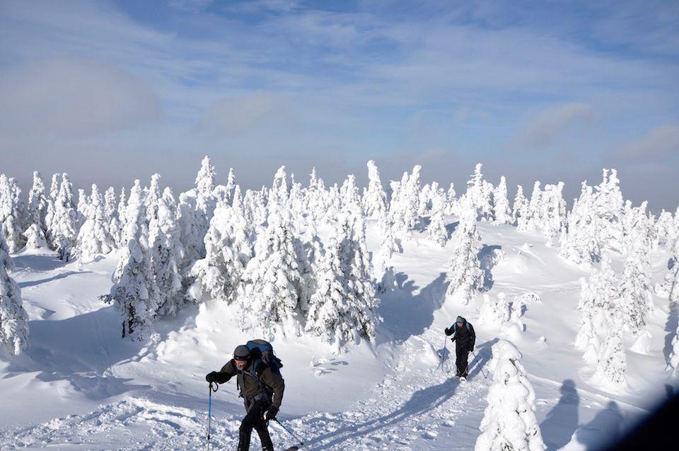 snowshoeing in Quebec