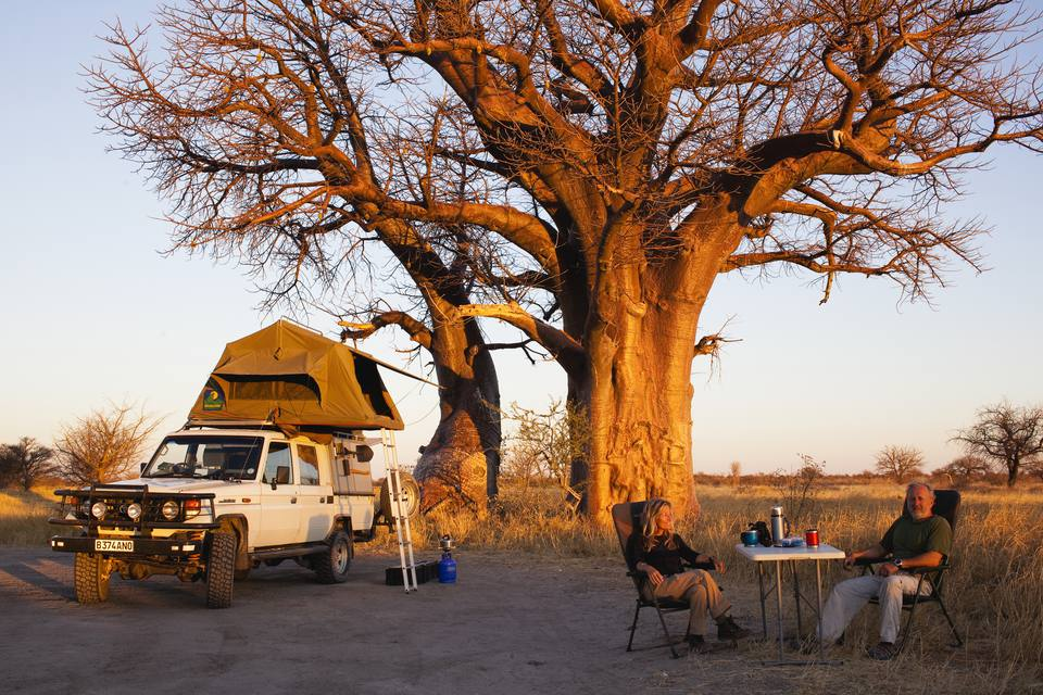 How to Plan an Affordable African Safari