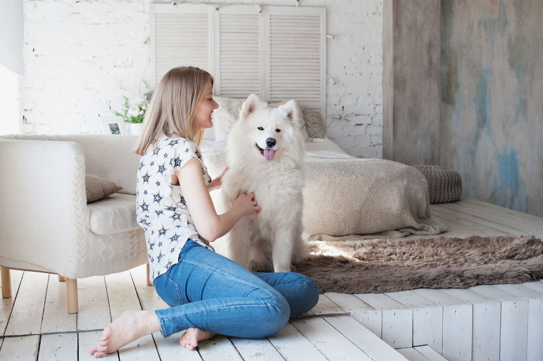 Why Dogs Shed and How to Reduce Shedding in Dogs
