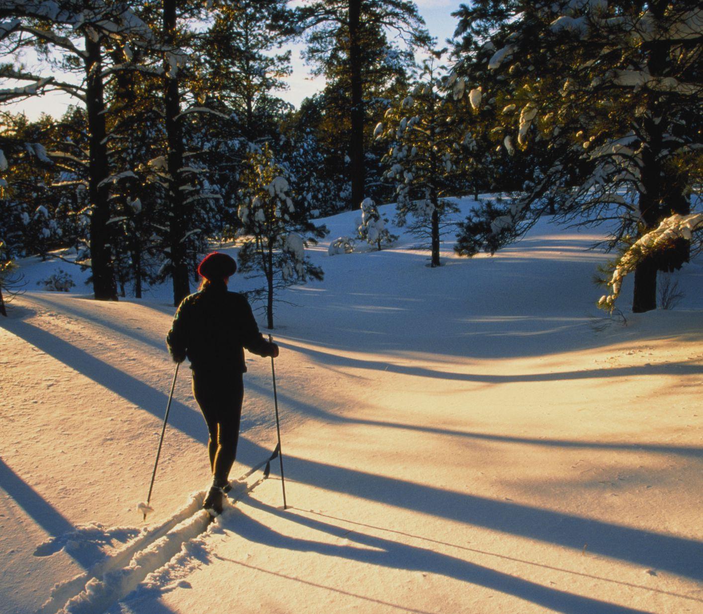 Where To Ski In Arizona Snowbowl Sunrise And More