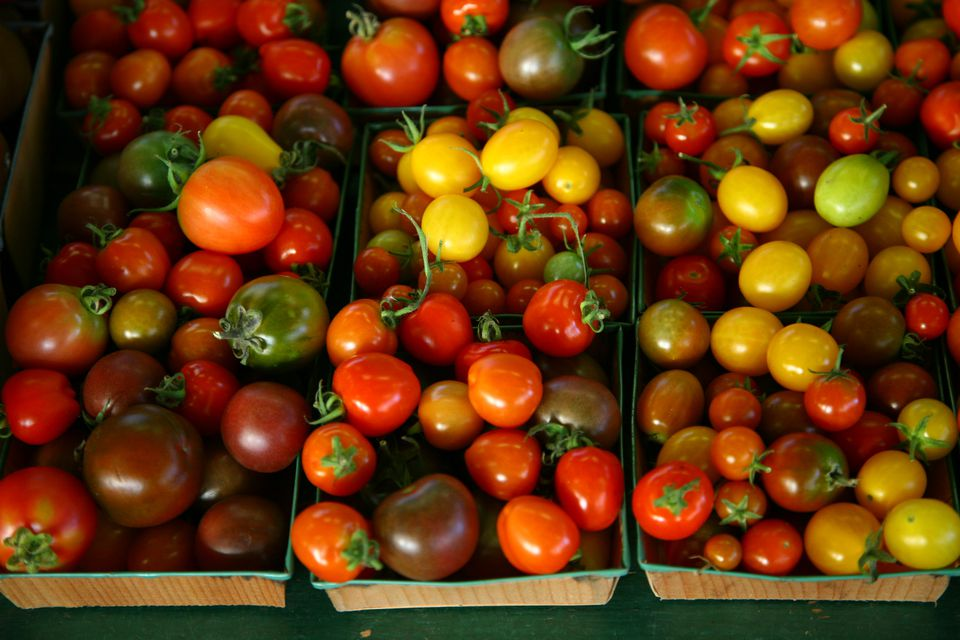 Cherry tomatoes, Oakland County Farmers' MarketPontiac, Michigan.
