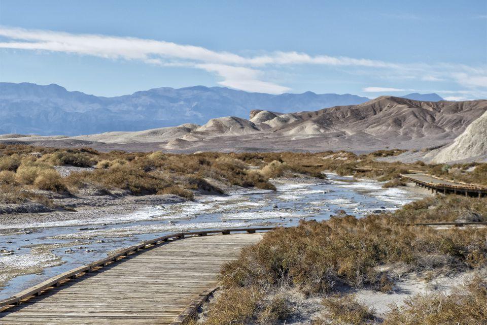 Salt Creek in Death Valley