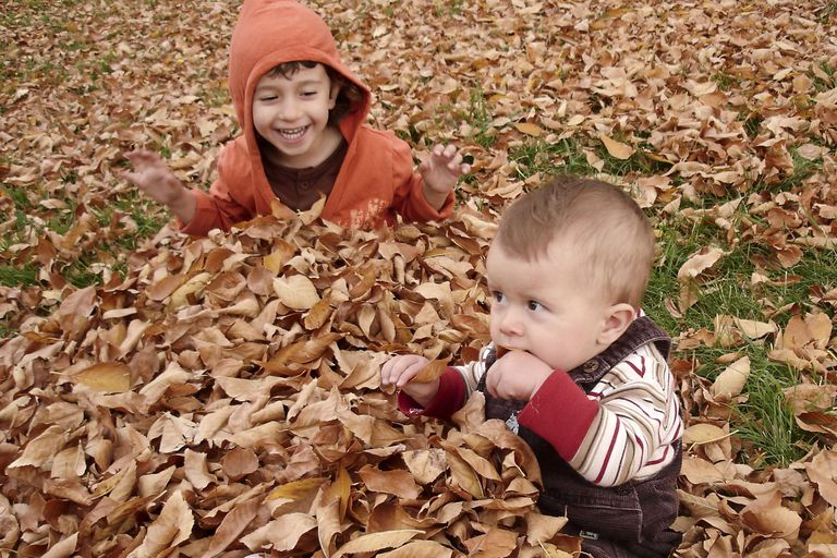 Girls play with autumn leaves
