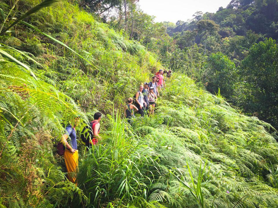 Kalu Yala travel jungle Panama