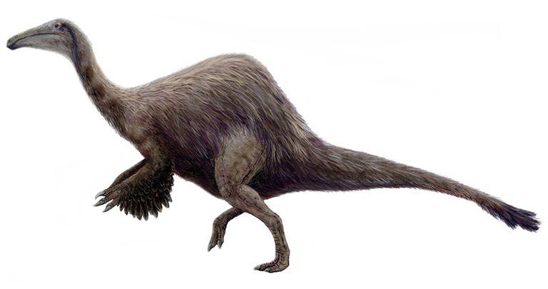 deinocheirus