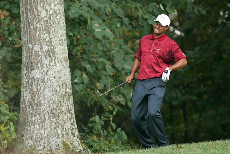 Tiger Woods grimaces in pain, grabbing his back, after hitting from the trees during the 2005 Presidents Cup