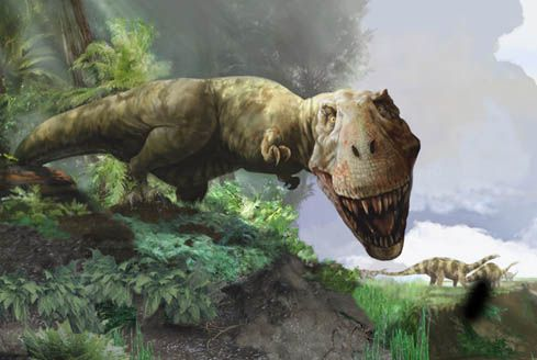 I got Tyrannosaurus Rex. What Kind of Dinosaur Are You?