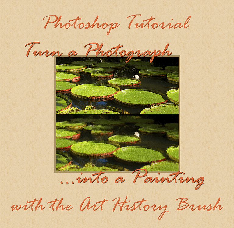 Painterly Photo with Photoshop's Art History Brush