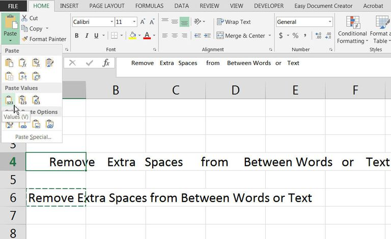 Remove Extra Spaces From Text Data in Excel with the TRIM Function