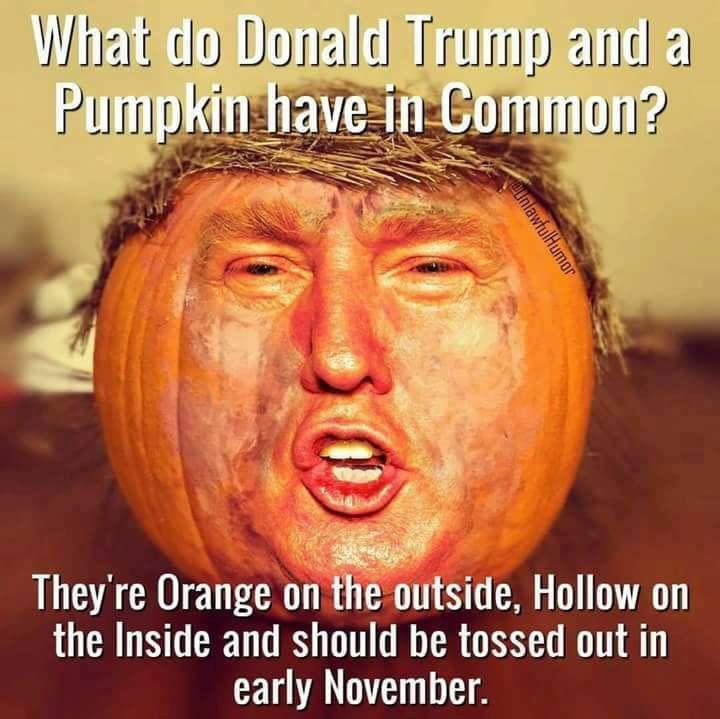 Funny Memes: Frightfully Funny Halloween Memes And Cartoons
