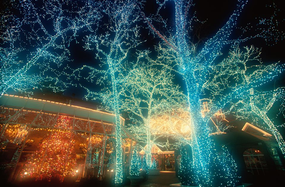 25 outdoor christmas decoration ideas in pictures for 57in led lighted peacock outdoor christmas decoration