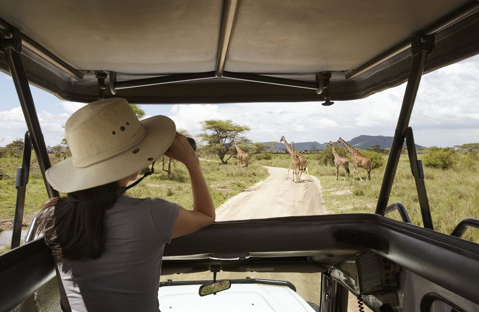 The Top Five Tanzania Safari Itineraries for 2017