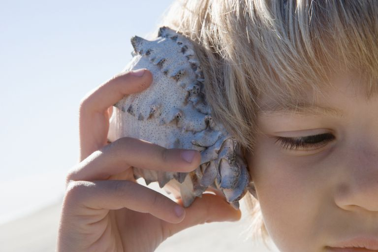 five senses and how they work The outside world shapes children's development through experiences that they have, which include exposure to the five  five senses and  work (and how our.