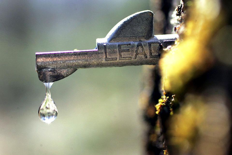 BOWDOIN, ME - MARCH 28: A drop of fresh sap falls from a tap in a maple tree March 28, 2006 in Bowdoin, Maine.