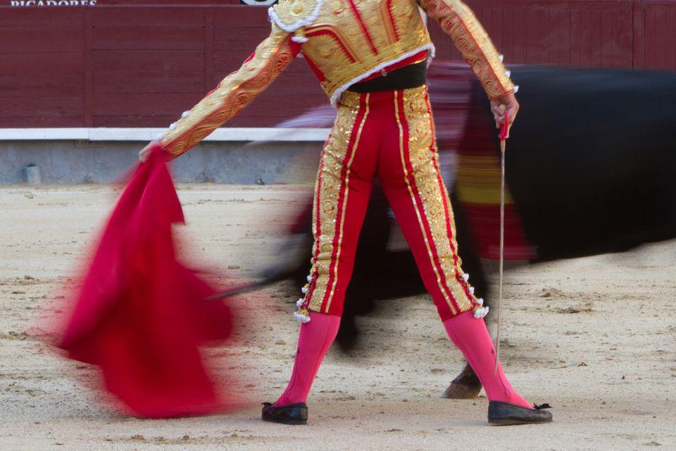 Torero - Bullfighter