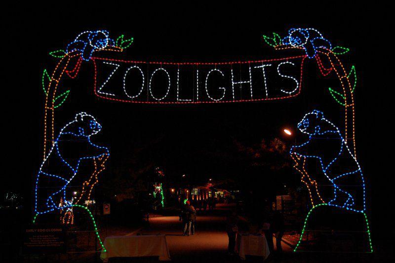 Zoolights Photos Holiday Lights At The National Zoo