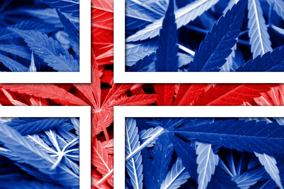 Iceland Flag on cannabis pattern background