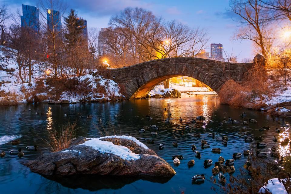 The Pond, Central Park, New York City