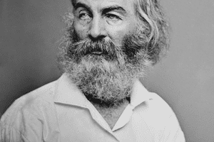 walt whitman spirituality vs sexuality Romanticism as portrayed through walt whitman's song of myself uploaded by the power of spirituality is seen here as surpassing the physically realm.