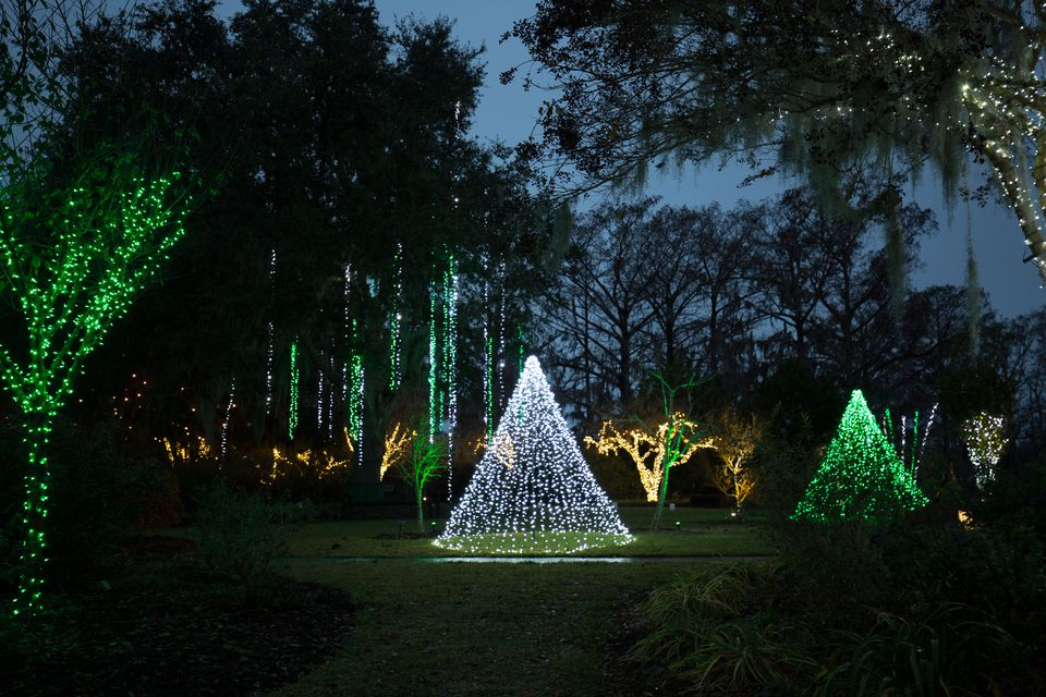 Lights of the Garden