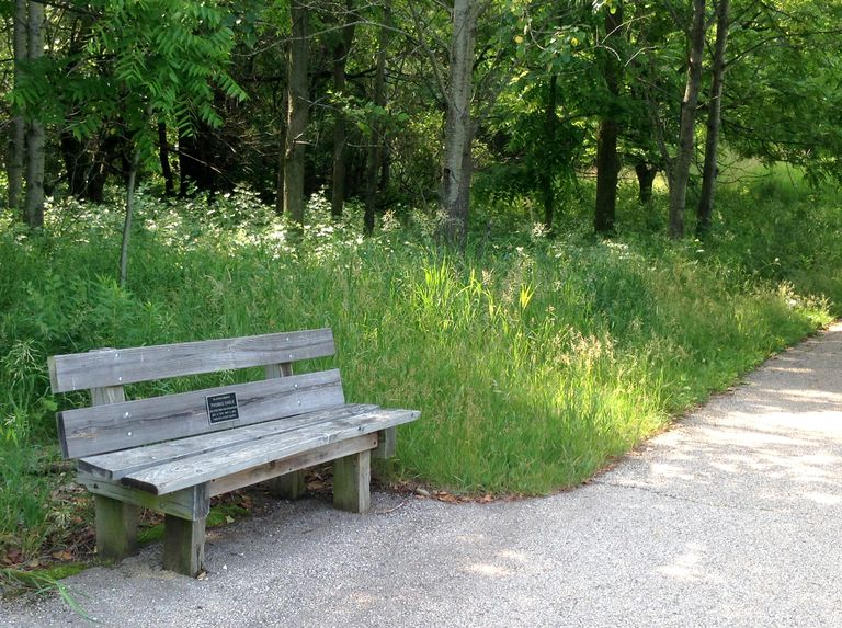 How To Memorialize A Death With Memorial Benches