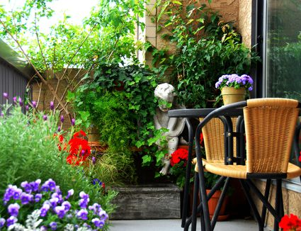 you can still have a garden - Garden Design Basics