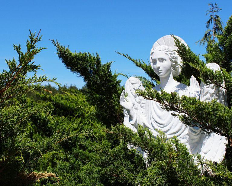 Ariel archangel nature angel tree