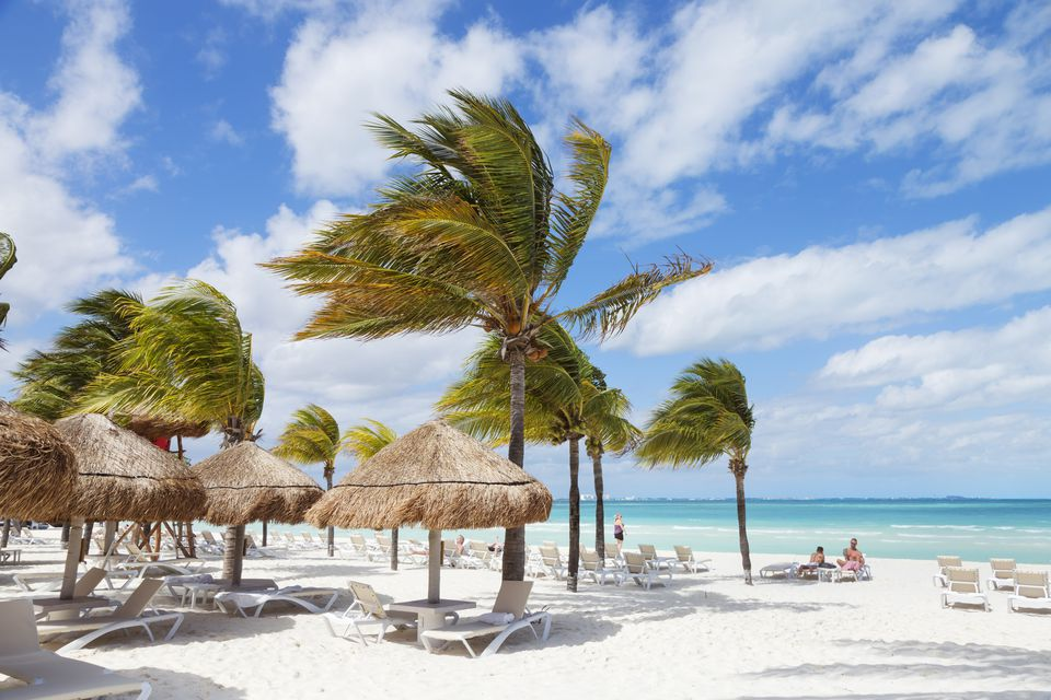 Mexico, Quintana Roo, Cancun, Caracol Beach, Windy day scene with palm trees and sunshades