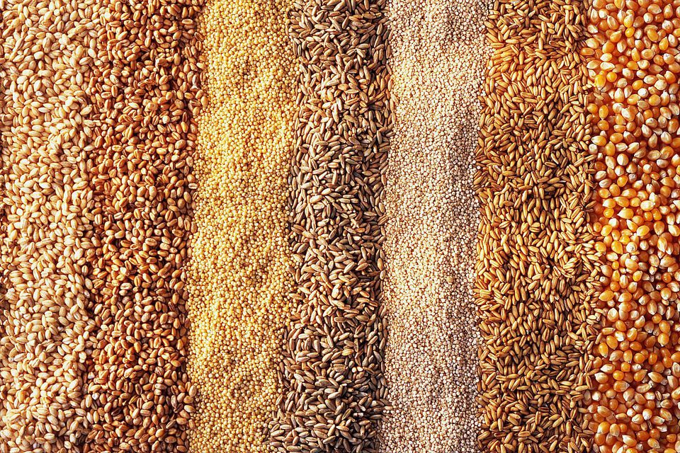 Various Types of Grains