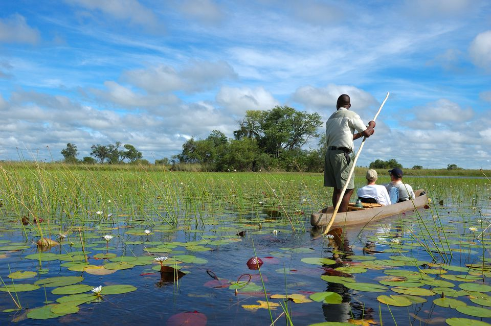 When is the Best Time to Visit Botswana