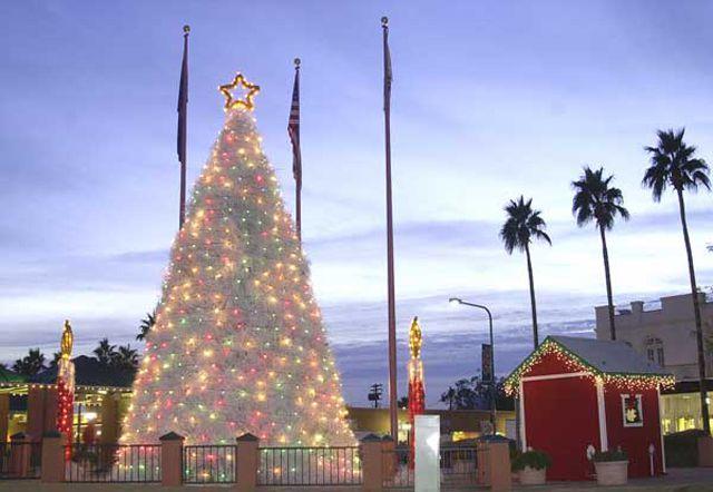 Chandler Az Parade Of Lights Tumbleweed Tree Lighting