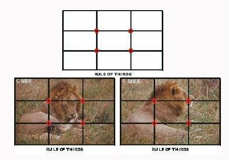 Art Composition Rules -- The Rule of Thirds