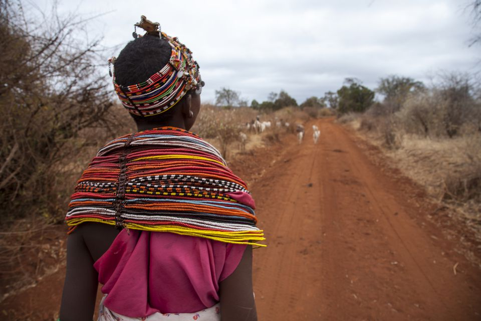 A young Samburu woman dressed in traditional colorful attire steering its herd of goats to find pastures around Marsabit, Eastern Province, Kenya