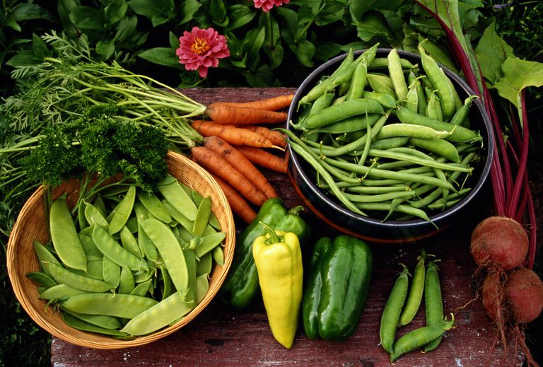 Vegetables are loaded with phytochemicals.