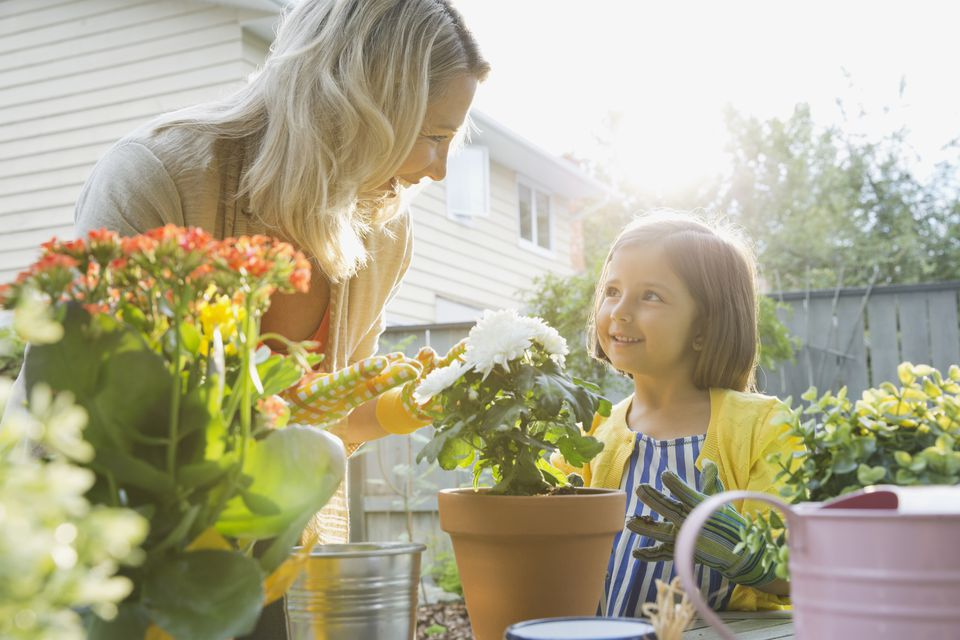 8 Ways to Green Your Indoor and Outdoor Spaces