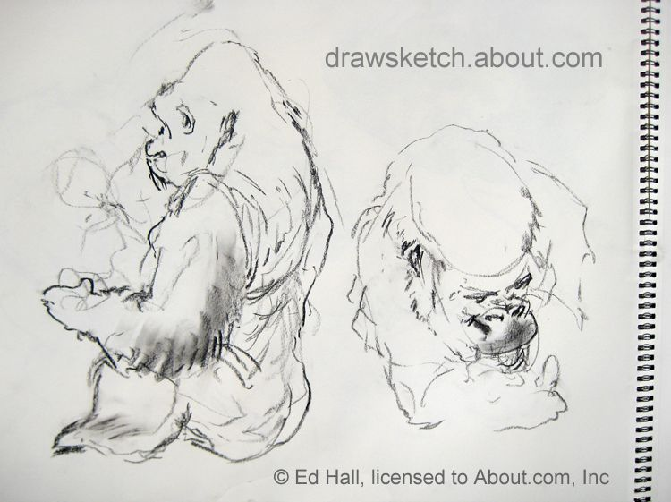 A fast, informal sketch of Gorillas in the Zoo